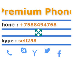 Premium Phone